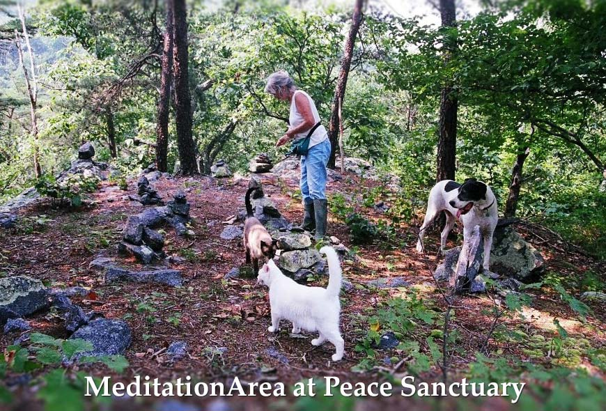 meditation area